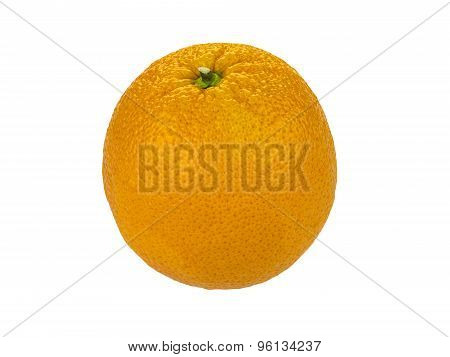 Valencia Orange Over White Background