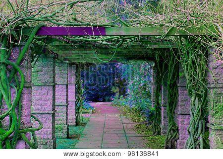 Exotic Pathway