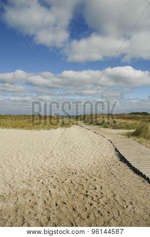 Windy Day On Beach
