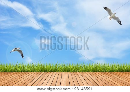 Wood Floor And Grass Under Blue Sky And Birds