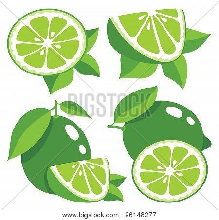Limes Vector Illustration