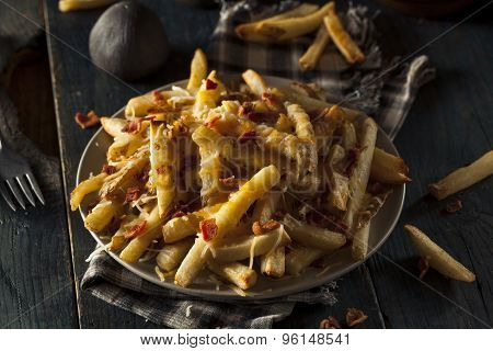 Homemade Salty Cheese French Fries