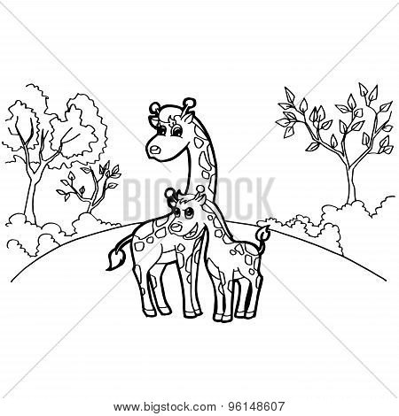 giraffe cartoon coloring pages vector