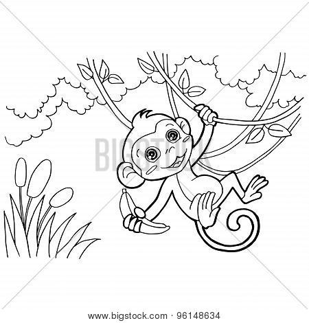 monkey cartoon coloring pages vector