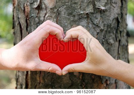 Close-up of human hands making heart shape in front of tree