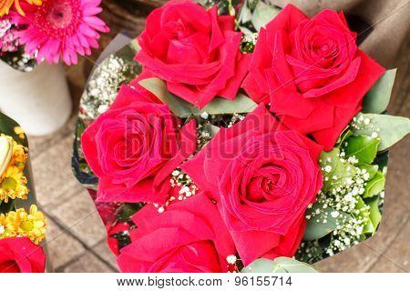 Pink Rose Group