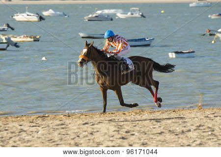 Horse Racing On The Beaches Of Sanlucar