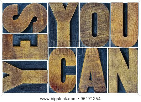 Yes you can - motivational slogan - isolated text in vintage grunge letterpress wood type printing block, rectangular layout