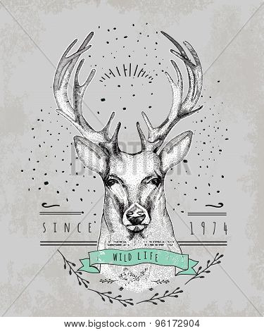 Vintage Dear logo. Design for t-shirt