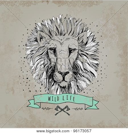 Vector retro lion head design illustration, vintage  logo. Vinta