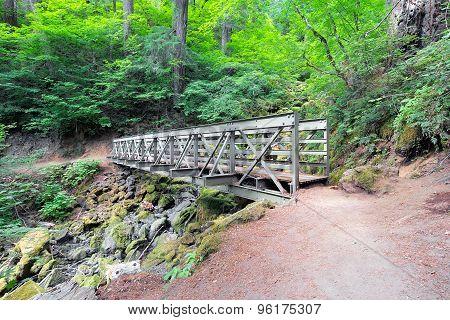 Pedestrian Bridge At Hiking Trail