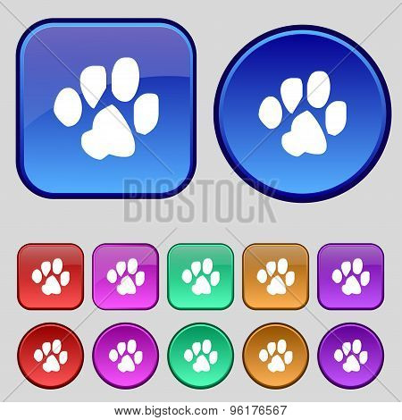 Trace Dogs Icon Sign. A Set Of Twelve Vintage Buttons For Your Design. Vector