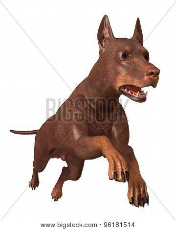 Render 3D Dog Running