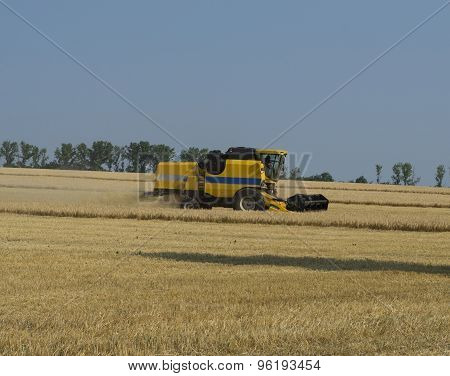 The Car Collects Grain In The Field