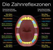 picture of reflexology  - Teeth reflexology chart  - JPG