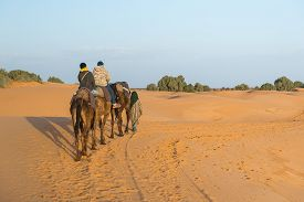 picture of sahara desert  - Merzouga Morocco  - JPG
