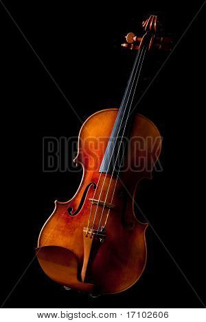 Schöne Violine