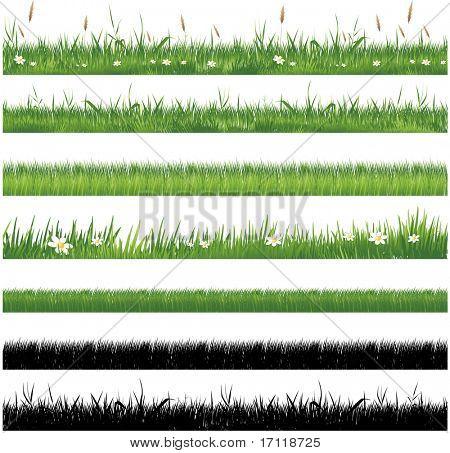 Grüne Gras-Sammlung