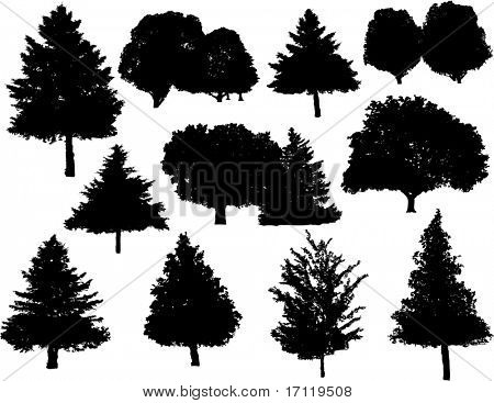 Vector tree silhouettes