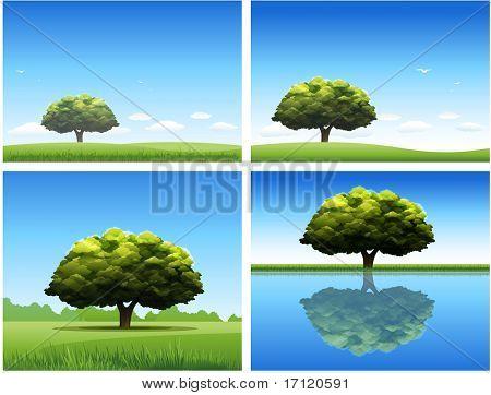 Fondo de paisaje de naturaleza de árbol