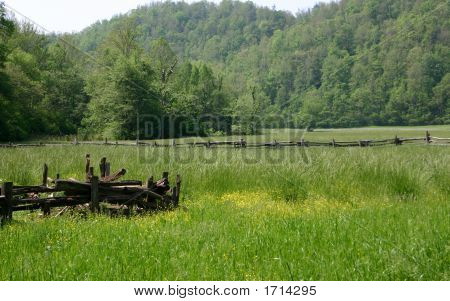 Meadow - Great Smoky Mountains National Park