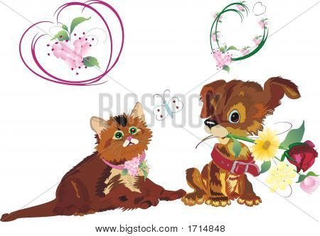 Kitten, Puppy And Flowers