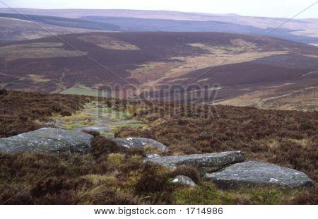 Erosion Gully