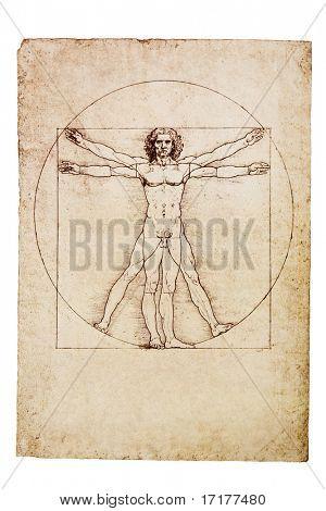Da Vinci's Vitruvian Mann