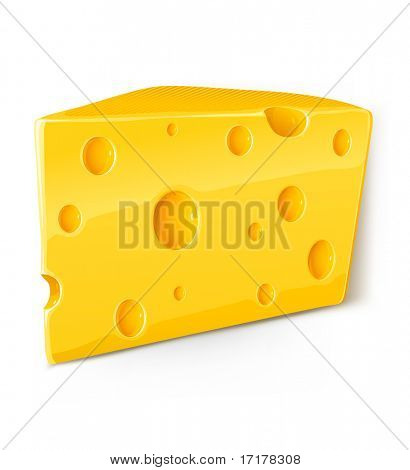 vector piece of cheese isolated food on white background