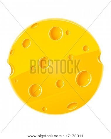 vector round piece of cheese isolated food on white background