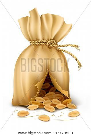 cracked sack wired by rope with wheat corn - vector illustration