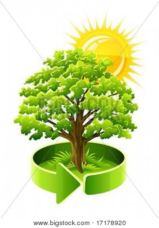 green tree oak as ecology symbol vector illustration isolated on white background