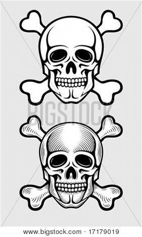 skull with skeleton bones piratic symbol vector illustration