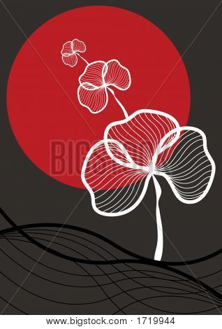 Oriental White Flower And Red Sun