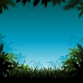 stock photo of jungle  - Jungle background - JPG