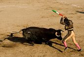 Corrida Bullfighting