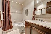 Постер, плакат: Two Tones Bathroom Interior Design In Apartment