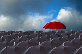 foto of safe haven  - red umbrella above the rest - JPG