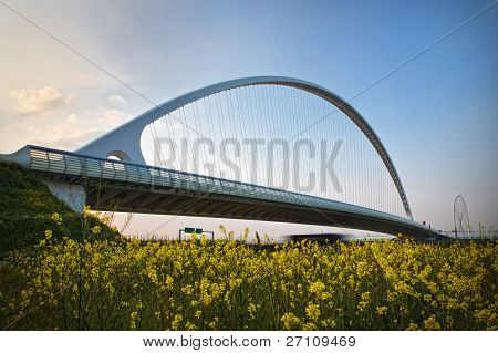 Arch Of Suspended Bridge