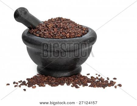 Privet fruit herb used in traditional chinese herbal medicine in a black granite mortar with pestle isolated over white background. Nu zen  zi.