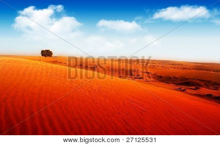 Extreme Wüstenlandschaft mit einzelnen Baum
