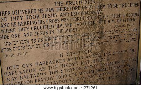 Israel Cruc