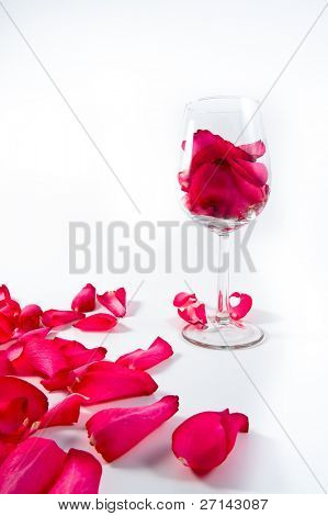 rose in the wine glass on white background