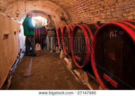 wine barrels in old wine cave
