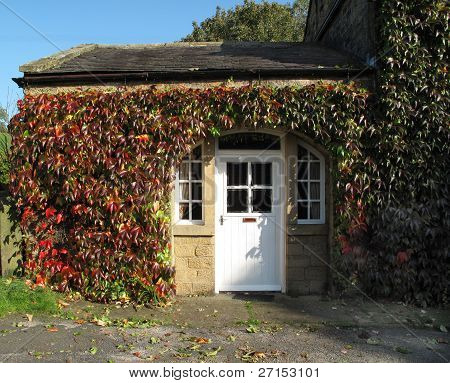 Old Cottage Covered In Autumn Ivy