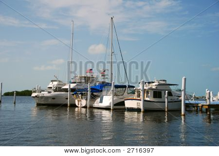 Boats Moored At Marina