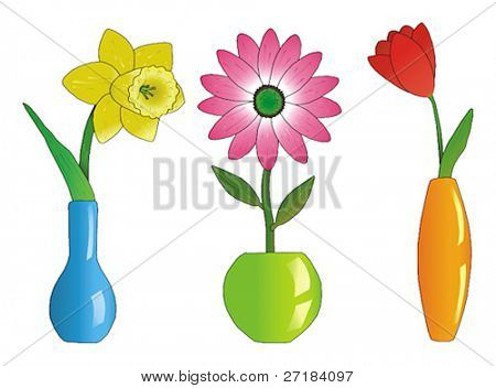 Three beautiful flowers in colorful vases vector