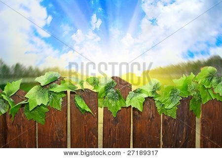 A country road above the fence
