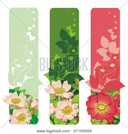 Valentine's day banners with flowers & leafs