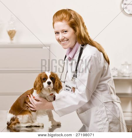 Happy veterinarian examining dog during checkup